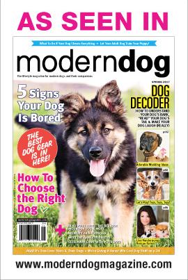 As seen in Modern Dog maga