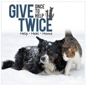 Give Once To Help Twice