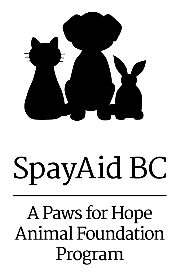 New Partnership Supports Spaying and Neutering