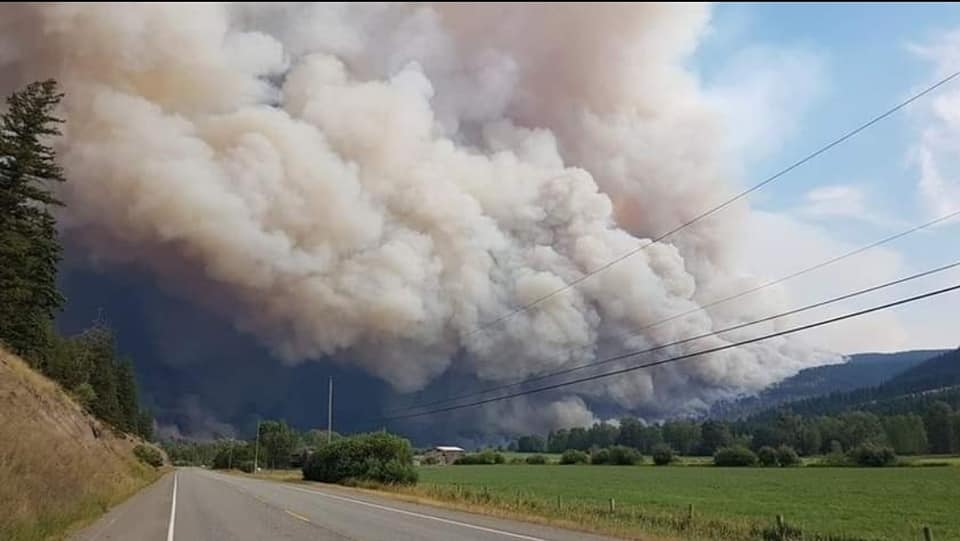Helping Animals in the 2021 BC Wildfire Zone